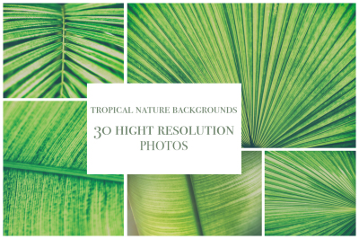 30 tropical background photo bundle