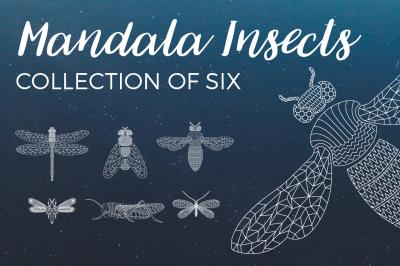 Mandala Insects