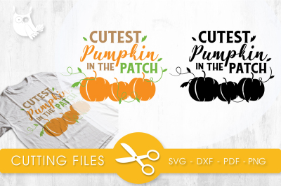 Cutest pumpkin in the patch  SVG, PNG, EPS, DXF, cut file
