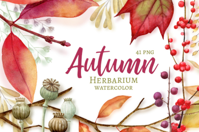 Autumn Herbarium Watercolor Clipart
