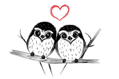 Cute owls - hand drawn illustration