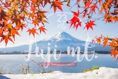 23 Fuji mt. & Autumn season set