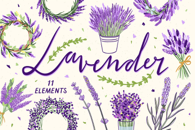 Lavender Illustrations