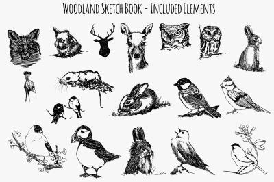 Woodland Animal Sketch Vector Bundle