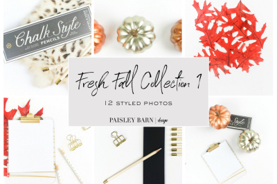 Fresh Fall Collection 1