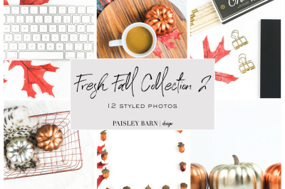 Fresh Fall Collection 2