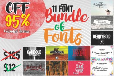 11 Font Bundle