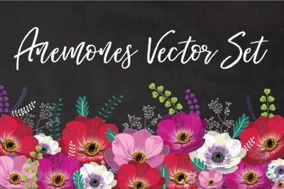Floral Anemones Vector Set