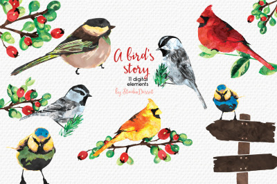 A Bird's Story - Watercolor Cliparts