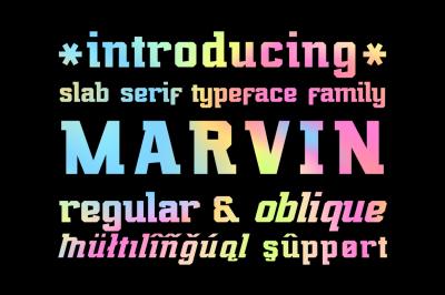 Marvin Regular & Oblique