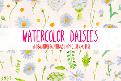 Spring Daisies 60 Watercolor Element