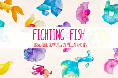 13 Beta Fighting Fish Elements