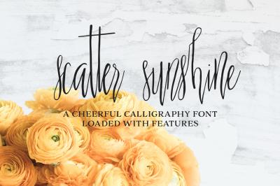 Scatter Sunshine Script