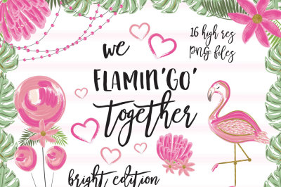 We Flamingo Together bright paint set