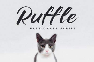 Ruffle - Casual Brush Font