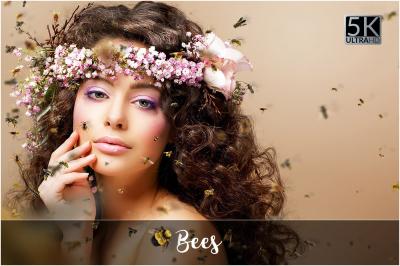 5K Bees Overlays