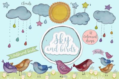 Sky and birds