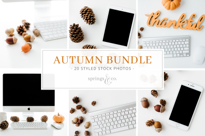Autumn Styled Stock Photo Bundle