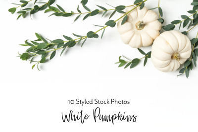 White Pumpkin Bundle