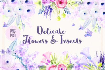 Delicate Flowers & Insects