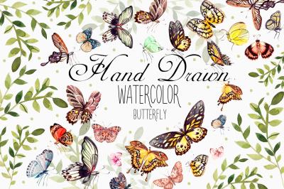 Beautiful watercolor butterflies