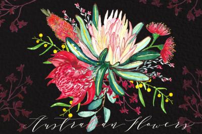 Australian flowers watercolor