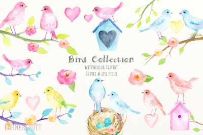 Watercolor Clipart Birds Pastel Color