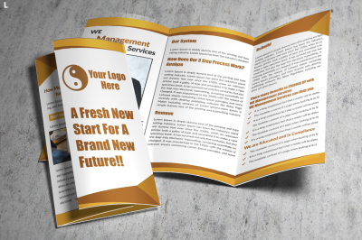 Management Trifold Brochure