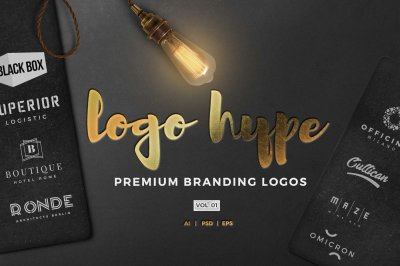 Logo hype vol.01  premade logo kit