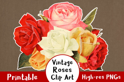 38 Vintage Rose Clipart, Floral Clipart, Flower Clipart, Wedding Clipart, Rustic Clipart