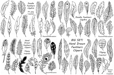 Big Set of Hand Drawn Feathers Clipart, Digital Feathers clip art