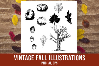 Vintage Fall Clipart, Autumn Clipart, Rustic Fall Clipart, Antique Pumpkin Graphics, Fall Leaves Clipart, Acorn Clipart