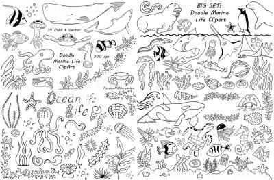 BIG SET of Doodle Marine Life