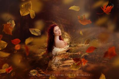 Falling Leaves Photo Overlays