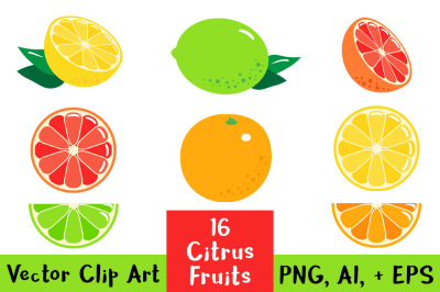 16 Citrus Fruits, Fruit Clipart, Citrus Clipart, Lemon Clipart, Lime Clip Art, Orange, Grapefruit