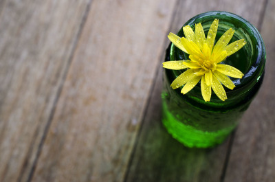 Small Dandelion in a Green Glass Jar