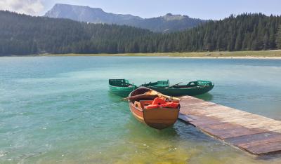 wood boat and lake