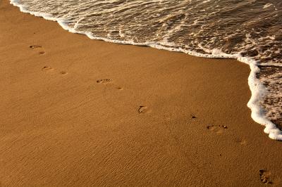 Food print on sand. Sunset time
