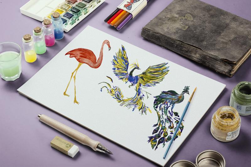 watercolor-birds-set