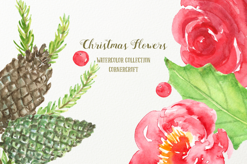 watercolor-christmas-flowers