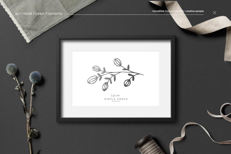 40-botanical-hand-drawn-elements