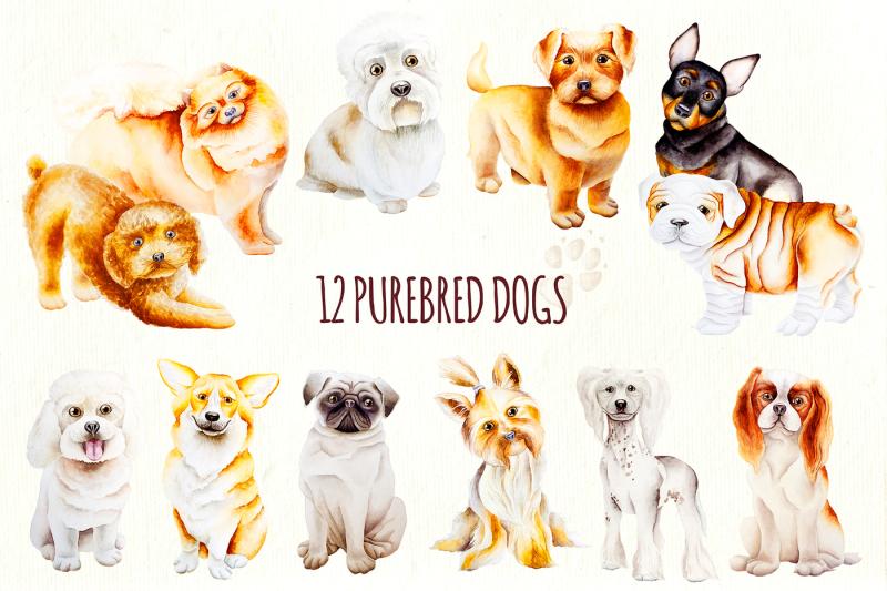 dog-creator-calendar-2018