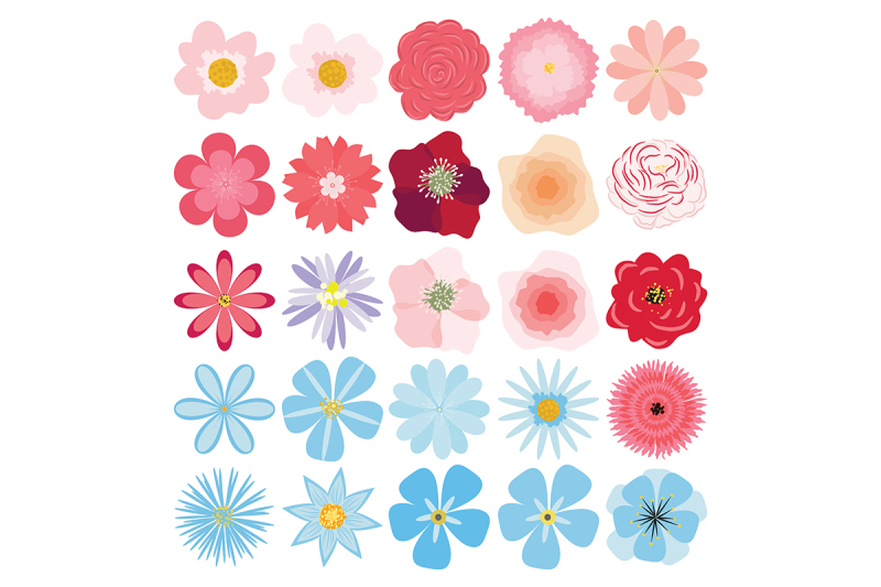 flower-collection