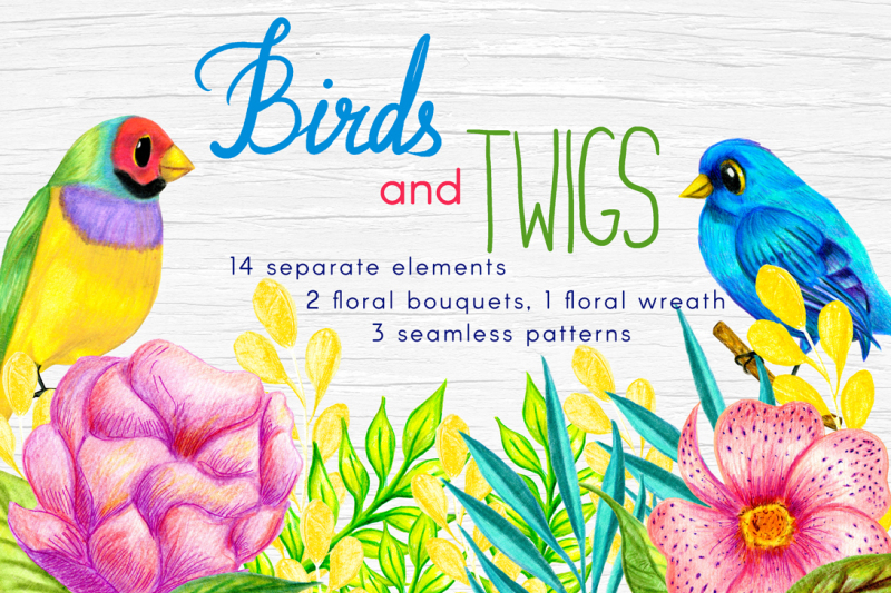 birds-and-twigs