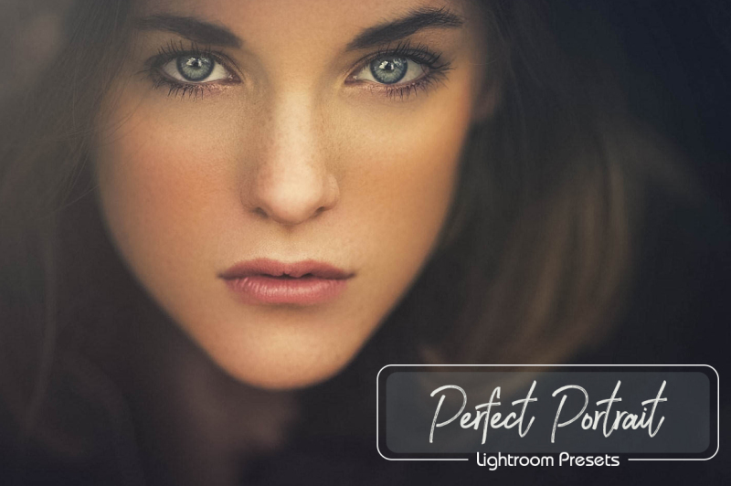 20-portraits-lightroom-presets