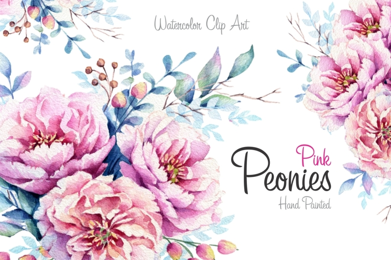 pink-peonies-watercolor-set