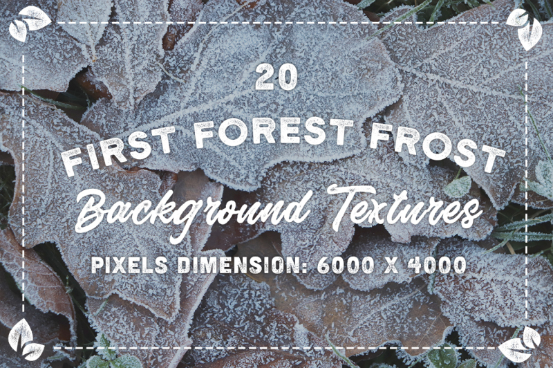 20-first-forest-frost-background-textures