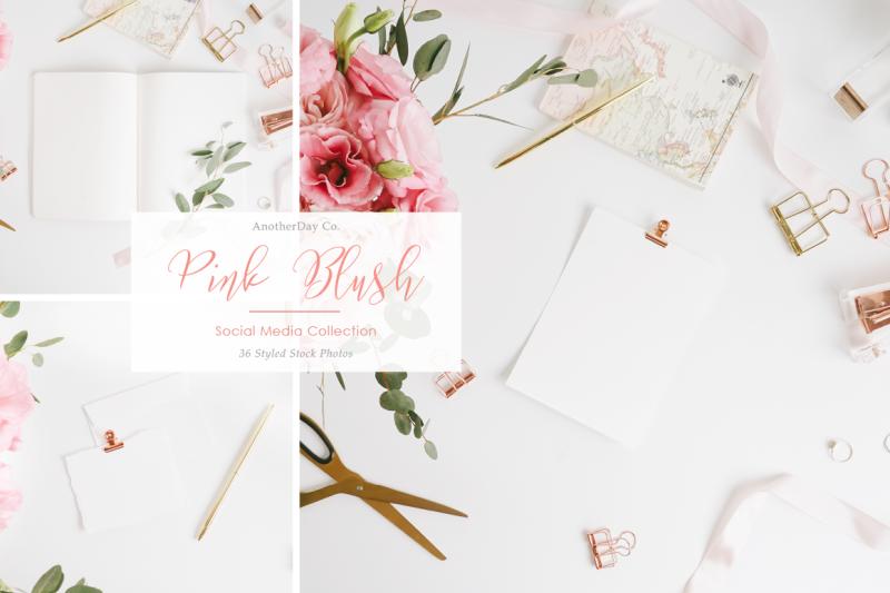 pink-blush-styled-stock-photos