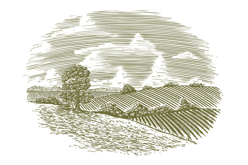woodcut-vintage-countryside