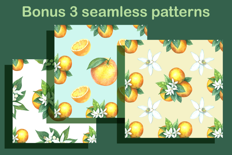 watercolor-oranges
